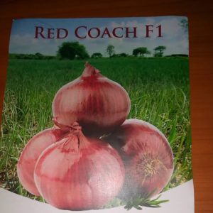Red coach f1 image