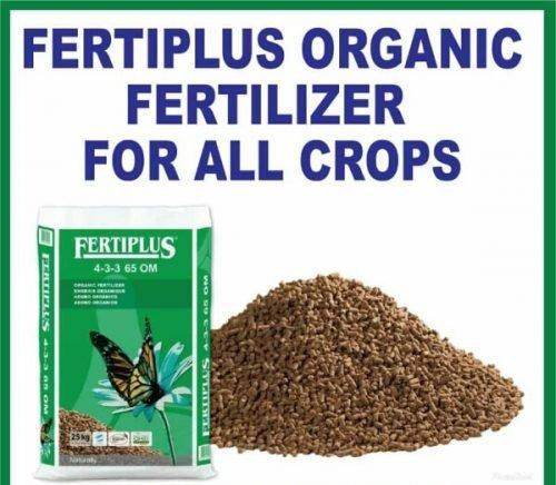 Fertiplus