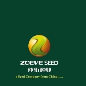 ZOEVE SEEDS
